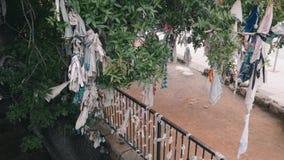 De wensboom en de wens schermen gebied dichtbij oud kerk en graf in paphos van Cyprus Grote wensboom met lintenknopen stock footage