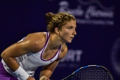De wereld No 20 tennisspeler Sara Errani Royalty-vrije Stock Foto's