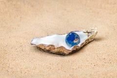 De wereld is uw oester Royalty-vrije Stock Afbeeldingen