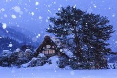 De wereld van de sneeuwsneeuw Royalty-vrije Stock Afbeeldingen