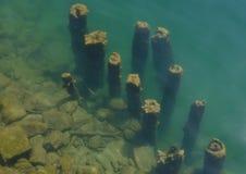 De Wereld van het water royalty-vrije stock foto