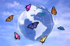 De wereld van vlinders Stock Afbeeldingen