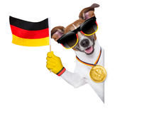 De wereldbekerhond van Brazilië FIFA Stock Foto's