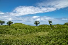 De Werelderfenis van Shiretokounesco, Hokkaido, Japan royalty-vrije stock fotografie
