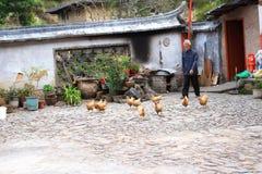 De werf van de aarden structuren van Fujian stock afbeelding