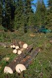 De werken van de bosbouw Royalty-vrije Stock Foto's