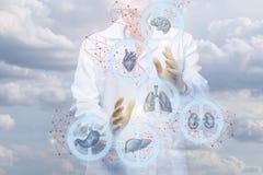 De werken van de gezondheidsarbeider met het mechanisme van de interne organen stock foto