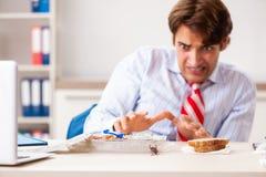 De werknemer die voedsel met kakkerlakken eten die rond kruipen stock foto