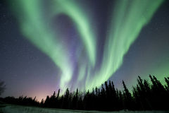 De werveling van de dageraad dichtbij Fairbanks Royalty-vrije Stock Afbeeldingen