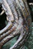 De werveling van het brons Stock Fotografie