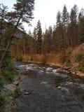 De westelijke rivier van Montana royalty-vrije stock foto's
