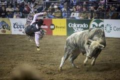 De westelijke Voorraad toont in Denver Stock Foto's