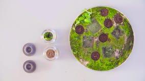 De wetenschapper die steekproeven van petrischaal nemen stock videobeelden
