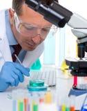 De wetenschapper die van het laboratorium bij laboratorium met reageerbuizen werkt Stock Foto's