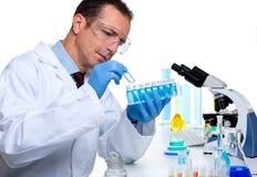 De wetenschapper die van het laboratorium bij laboratorium met reageerbuizen werkt Royalty-vrije Stock Foto
