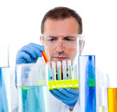 De wetenschapper die van het laboratorium bij laboratorium met reageerbuizen werkt Stock Foto