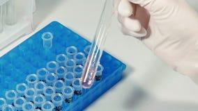 De wetenschapper van de laboratoriumtechnicus maakt chemische analyse stock footage