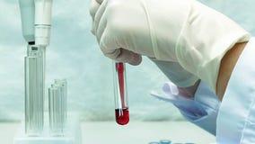 De wetenschapper van de laboratoriumtechnicus maakt chemische analyse stock video