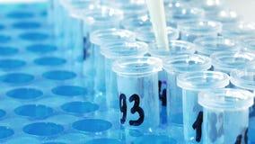 De wetenschapper van de laboratoriumtechnicus maakt chemische analyse stock videobeelden