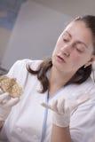 De wetenschapper van het laboratorium met petrischaal Royalty-vrije Stock Foto