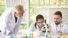 De wetenschappers werken in wetenschapslaboratoria stock fotografie