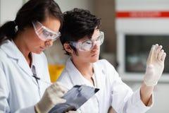 De wetenschapsstudenten die van het concentraat Petrischaal bekijken Stock Foto's