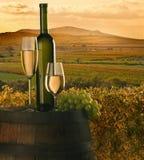 De wijn Stock Foto's