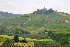 De wijn Alba Piemonte Italië van Barolo Royalty-vrije Stock Afbeelding