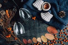 De wijn in glazen, rode bessen, builen en de herfst vertakt zich op donkere lijst stock fotografie