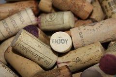 De wijn kurkt geniet van Royalty-vrije Stock Foto