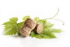 De wijn kurkt op druivenverlof royalty-vrije stock afbeeldingen