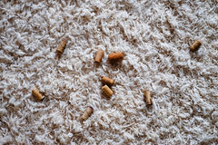 De wijn kurkt over wit tapijt Stock Afbeelding