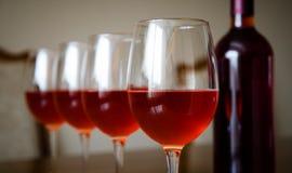 De wijn nam toe Stock Foto's