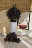 De wijn van Bourgondië Stock Afbeeldingen