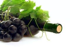 De wijn van de fles met druif en doorbladert royalty-vrije stock foto