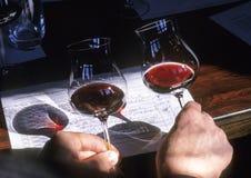 De wijn van de kers Stock Afbeelding