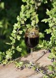 De wijn van de kruisbes Royalty-vrije Stock Afbeeldingen