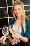 De wijn van de vrouw Royalty-vrije Stock Foto's
