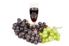 De wijn van de wijnstok Royalty-vrije Stock Foto's