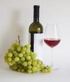 De wijn van Isabella Stock Foto