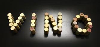 De wijn wordt geschreven die met kurkt Stock Afbeeldingen