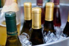 De Wijnen van Chateaulorane Royalty-vrije Stock Fotografie