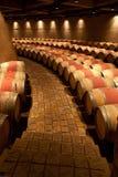 De Wijngaard Mendoza Argentinië van Zapata van Catena Royalty-vrije Stock Afbeeldingen