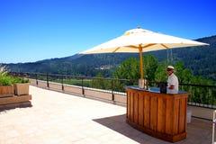 De Wijngaard van Stirling, Sonoma en Napa Vallei, Californië royalty-vrije stock afbeeldingen