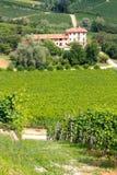 De wijngaarden en de villa van Langhe in Italië Stock Afbeeldingen