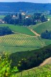 De wijngaarden van de chianti stock foto's