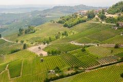 De wijngaarden van La Morra stock foto's