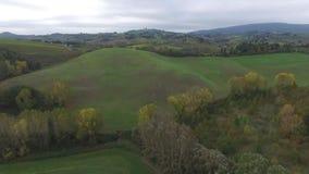 De wijngaarden van Toscanië stock footage