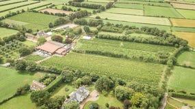 De Wijngaardwijnmakerij van Jersey royalty-vrije stock foto