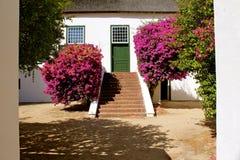 De wijnlandgoed van Grootconstantia Royalty-vrije Stock Afbeelding